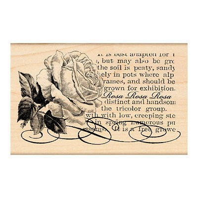 PENNY BLACK RUBBER STAMPS ROSA LOVELY ROSE SCRIPT STAMP